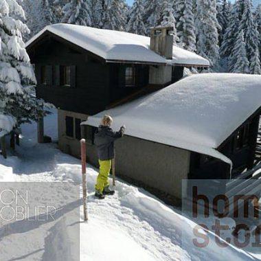 Contesse_1980gryon-homestory