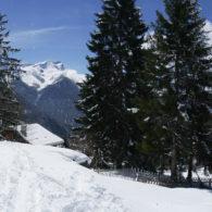Joli terrain avec projet d'un chalet en résidence principale ## sur la piste de ski