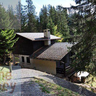 DSC_0051_1980gryon-homestory