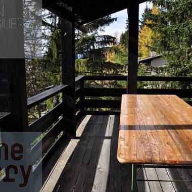 DSC_0057_1980gryon-homestory