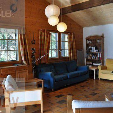 DSC_0065_1980gryon-homestory