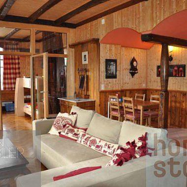 DSC_0855_1980gryon-homestory