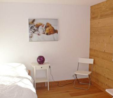 appartement-l'aurochs-inside-6571698-zoom
